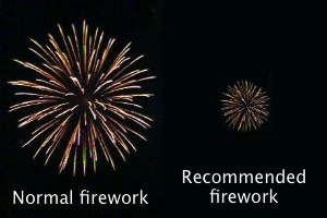 portfolio fireworks